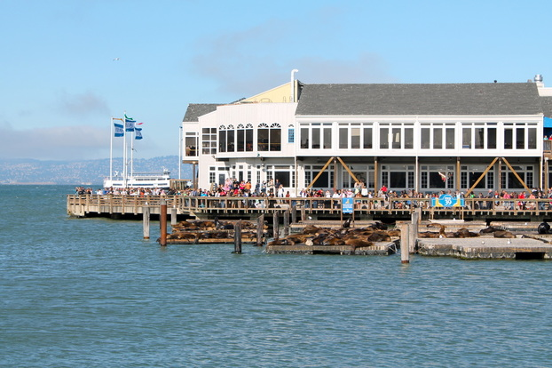 PIER 39 // San Francisco, CA | Yellow Mondays