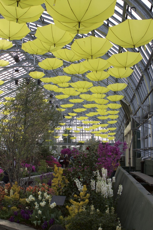 Garfield Park Conservatory // Chicago, IL | Yellow Mondays